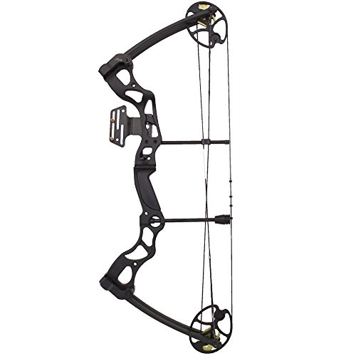 Southland Archery Supply SAS Rage 70 Lbs 30'' Compound Bow (Black with Full Accessories in Carbon)