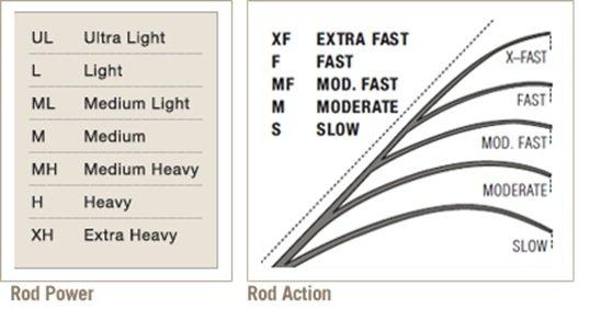 Rod Action Vs Power