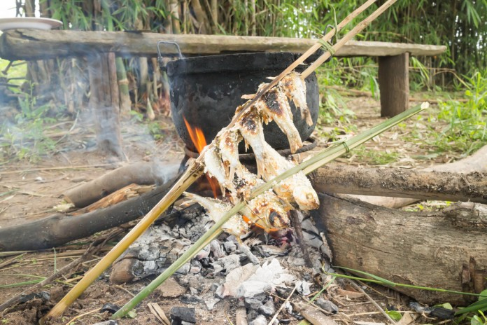 How to Cook Fish In the Wild