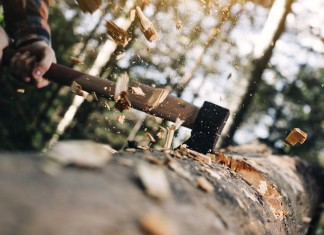 Top 6 Best Felling Axes for the Money