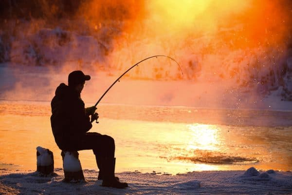 Night Ice Fishing Species