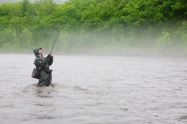 Trout Fishing In A Drizzle