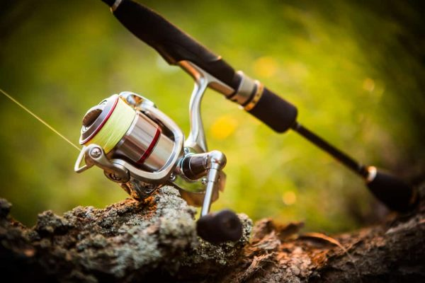 How to Clean a Spinning Reel