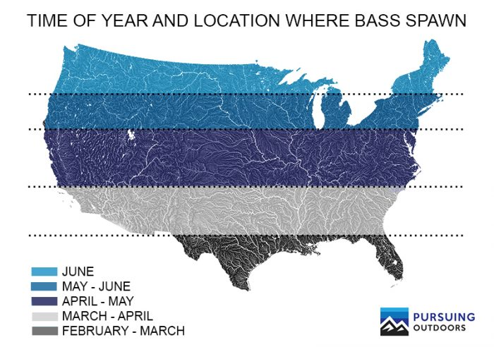 When do Bass Spawn Across America