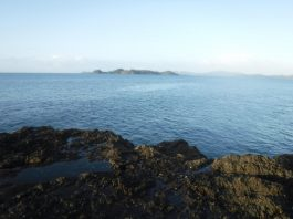 Bay of Island Fishing in New Zealand