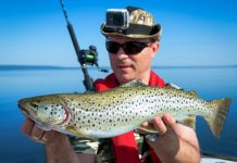 Best Baits & Lures for Speckled Trout